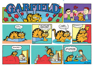 Does anyone have any Garfield Comic Books