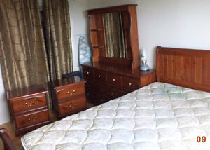 Complete Queen Size Bedroom Set (lightly used)