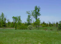 1945 County Road 6 - Odessa - 3.5 Acre Building Lot W/ Dug Well