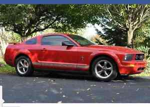 2006 Ford Mustang Coupe (2 door) Cambridge Kitchener Area image 1