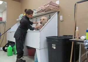 I'm looking for a job in the pet grooming industry