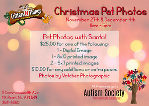 Critters N Things - Christmas Family/Pet Photos St. John's Newfoundland image 1