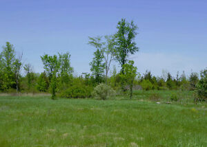 Vacant Land/Building Lot in Odessa - 1945 County Rd 6