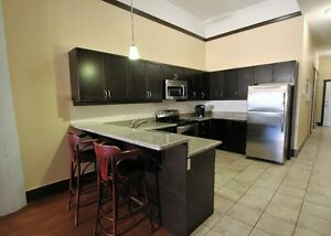 Fully Furnished 2 Bedroom Condo For Rent Cornwall Ontario image 3