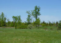 3.5 Acre Building Lot north of Odessa