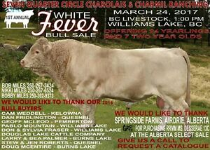 1st Annual White Fever Bull Sale