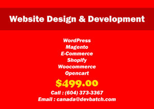 Personal/ Business Website