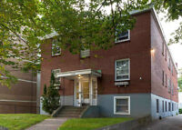 1 BEDROOM STUDENT & PET FRIENDLY APARTMENTS CLOSE TO DAL & SMU