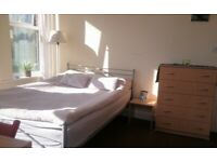 DOUBLE ROOM Available NOW NICE SUNNY Room in Brighton Center VERY CLEAN & tidy students welcome
