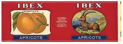 Ibex Brand  Vintage Apricots  Goat  An Original 1920 S Tin Can Label   815