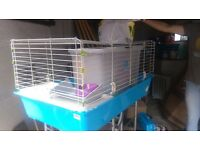 Indoor rabbit / guenia pig hutch