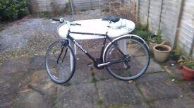 Ridgeback Bike for Sale - £40