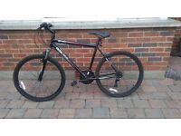 Man and ladies mountain bikes for sale