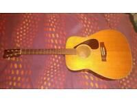Acoustic guitars Yamaha FG335