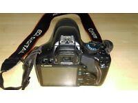 Canon DS126181 + telephoto lens