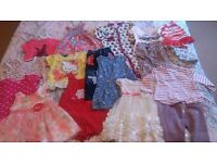 baby girl clothes bundle 9-12