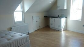 spacious studio flat (ground floor)