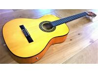 Brand New Electro - Acoustic Classical Guitar Full Size