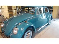 VW CLASSIC BEETLE 1200 SALOON. 1964. IMMACULATE RESTORED CONDITION THROUGHOUT.