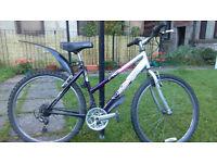 Raleigh mountain / hybrid bike