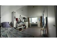 Beautiful Huge Room, Ensuite, Garden, 2 min to Station