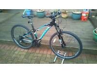 Giant Revel 3 mountain bike