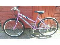 Ladies bike - Sabre Genie ost geometry