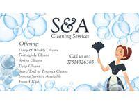Domestic cleaner Belfast