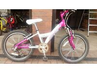 Girls Raleigh Angel Bike
