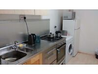 BEAUTIFUL DOUBLE ROOM IN NICE 2 BED FLAT