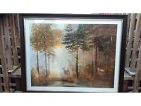 "Framed Picture ""the quiet Forest "" by Gerald Coulson"" With dark wooded frame in very good condition."
