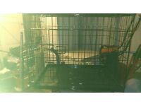 Dog Crate - Excellent condition,