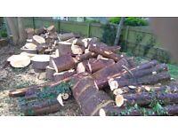 Garden mulch and logs