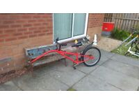 Kids Tag along trailer bike