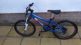 Ridgeback MX20 Terrain Bicycle