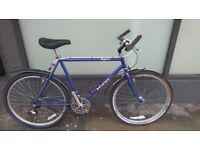 Raleigh Magna adult mountain bike - needs right pedal replacement