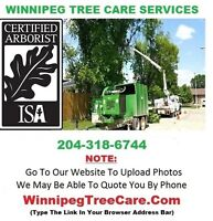 W★ Need Tree Care Service --> Get A Free Quote