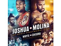 Anthony Joshua vs Eric Molina Manchester Arena