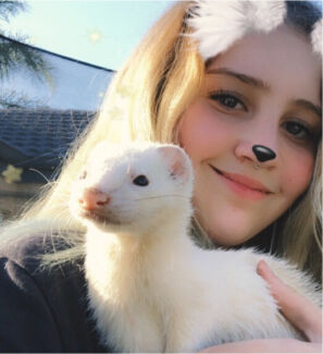 In need of ferret cage
