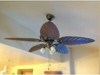 Florida Style Ceiling Fan with Lights