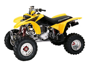 Looking for a cheap / blown up honda 400ex