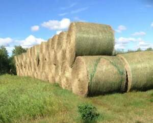 HAY BALES FOR SALE - 1400lb