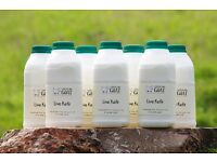 Goats Milk KEFIR from The Chuckling Goat 1x 21day course/7 bottles £40