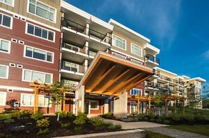 Modern 1+den suites at The Crest in Nanaimo!