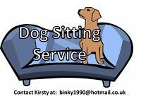 Dog sitting Eastleigh & Bishopstoke - £5ph