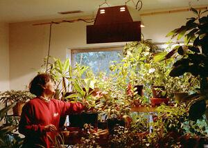 Indoor Garden Supplies, Hydroponics, Plant Nutrients, and More! Regina Regina Area image 6
