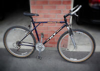 GT  Timberline FS mountain bike