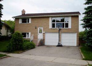 All Brick Raised Bungalow in Desirable Forest Heights Area