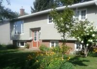 Raised Ranch close to Moncton Hospital with income property!