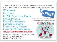 CASEYS CLEANING WINDOWS GUTTERS CARPETS HOUSE CLEANER